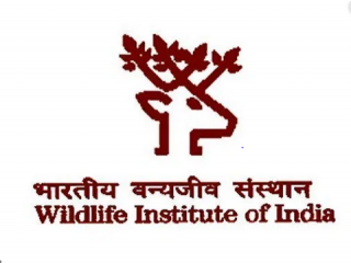 Logo Wildlife Institute Of India