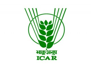 Logo Indian Council Of Agricultural Research