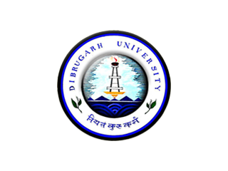 DU University Engineer Jobs Notification 2021 - 01 Vacancy in Assam