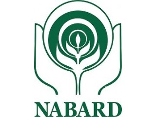 NABARD Office Attendant Score Card & Cutoff Marks Released